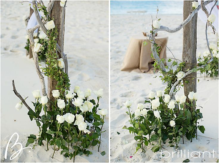 Driftwood Rustic Beach Wedding Arch