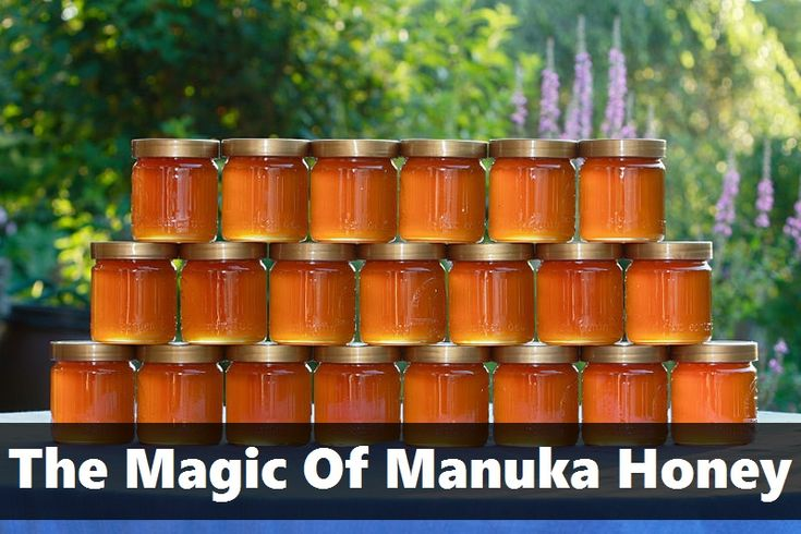 Share on Facebook Tweet on Twitter Share on Google In New Zealand, there is a very legendary bush known as the Manuka Bush or the Tea Tree. The honey produced by the bees that pollinate the Manuka Bush is darker, richer and more deeply flavored than other honey. It's also extraordinarily famous for it's healing properties. Read on for more about just what Manuka Honey…   [read more]