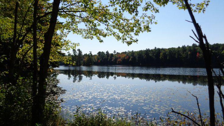 Doe Lake Loop @FrontenacPark