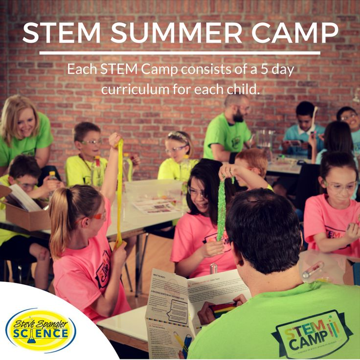 Stem Summer School Year 12: 1050 Best Images About 5th Grade Activities On Pinterest