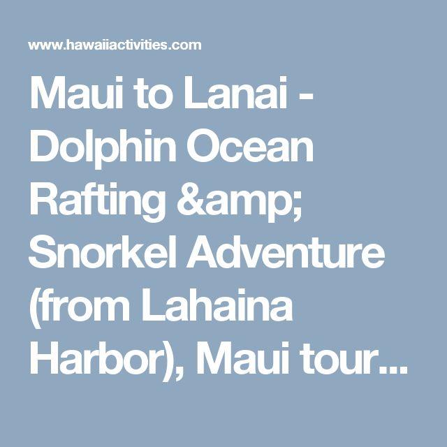 Maui to Lanai - Dolphin Ocean Rafting & Snorkel Adventure (from Lahaina Harbor), Maui tours & activities, fun things to do in Maui | HawaiiActivities.com