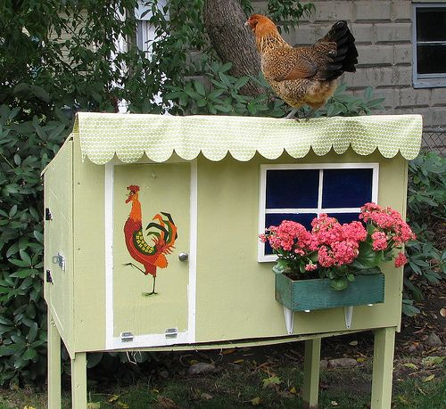 Flower Box And Colorful Rooster Make This Little Hen House