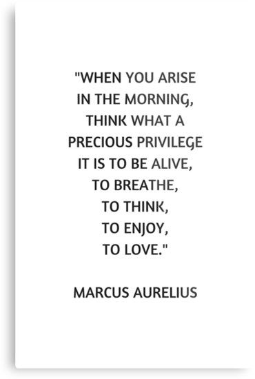 Stoic Philosophy Quote – Marcus Aurelius – What a precious privilege it is to be alive | Metal Print
