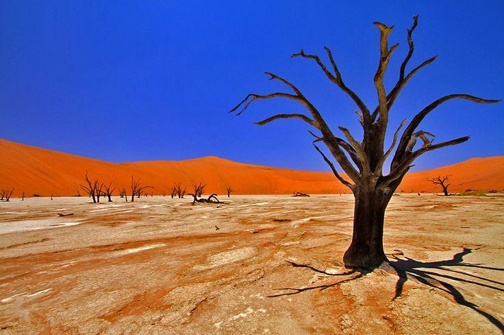 Namibia namib wüste von Community-Mitglied huntington - MARCO POLO