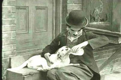 """"""".Οποιος ταίζει ένα πεινασμένο ζώο,ταίζει την ίδια του τη ψυχή."""" Charlie Chaplin"""