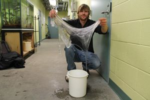 Hagfish Slime Could Provide Fibers for Future Eco-Friendly Clothes