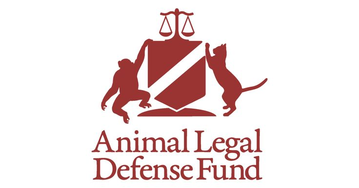 Please help? For more than three decades, the Animal Legal Defense Fund has been fighting to protect the lives and advance the interests of animals through the legal system.