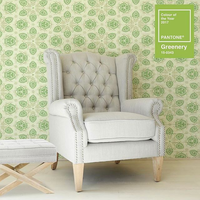 Pantone colour of 2017, bring on the greenery #pantone #colour #wingback #armchair #taupe #accentchair #lounge #interior #footstool #ottoman #relax #nursery #love #thursday #chill #lovemyblackmango