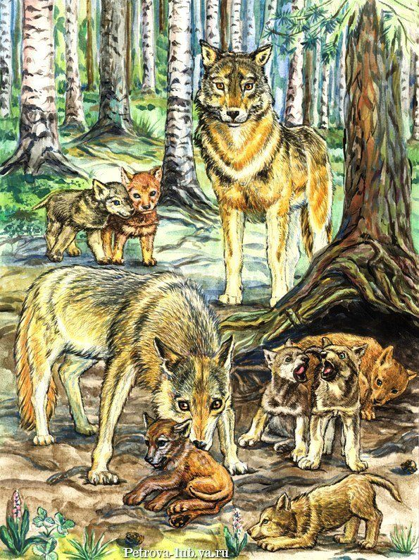 Схема вышивки «Волчья семья»