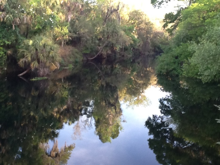 Hillsborough river state park florida camping for Hillsborough river fishing