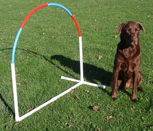 Create endless games and sequences with ground-level hoops. To make your own, all you need is sturdy plastic piping.