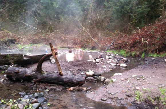 McCredie Hot Springs, Near Eugene, Oregon