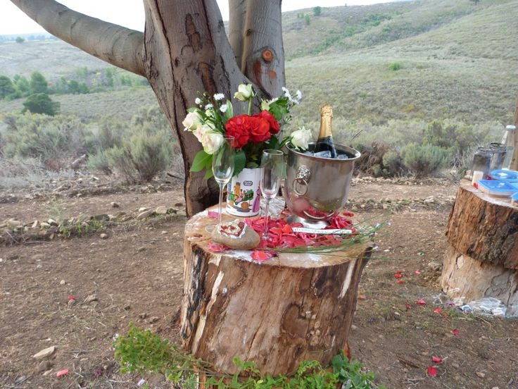 special requests & engagement plans - no problem, red roses, flowers and bubbly what a way to end a beautiful horse trail