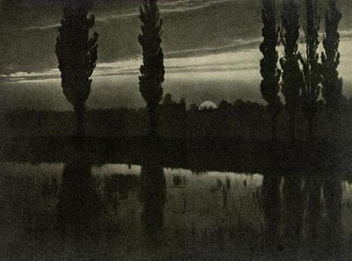 Poplar Trees at Sunset, 1909, by Jan Bulhak