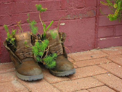 .Gardens Ideas, Green Shoes, Green Thumb, Shoes Plants, Shoes Planters, Guerilla Gardens, Guerrilla Gardens, Boots Planters, Kansas Cities