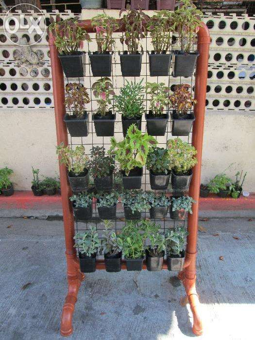 Plant Pots For Sale Part - 16: View Wall Plant Hangers And Vertical Pots For Sale In Manila On OLX  Philippines. Or