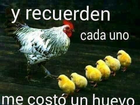¡huevos!