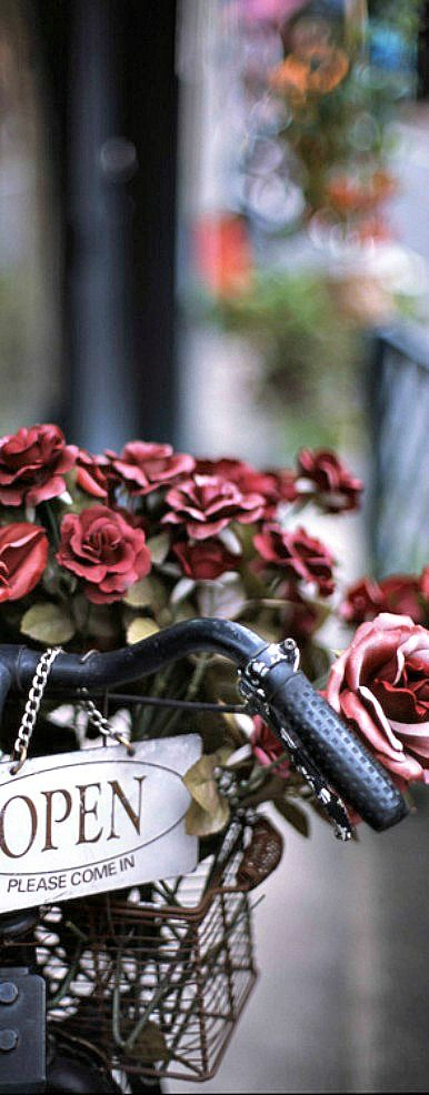 Red roses  adorn this bike, wonder if my friend will like this! TG