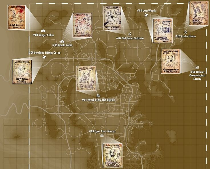In the Commonwealth, the Wasteland Survival Guide books come in 9 different issues, and every one you came across will give you a variety of effects.