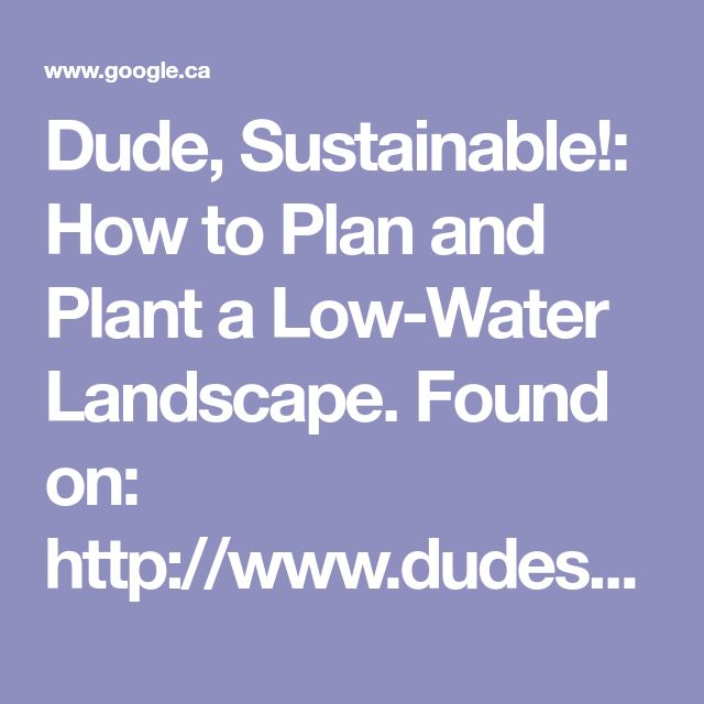 Dude, Sustainable!: How to Plan and Plant a Low-Water Landscape. Found on: http://www.dudesustainable.com/2015/02/how-to-plan-and-plant-low-water.h… | Pinteres…