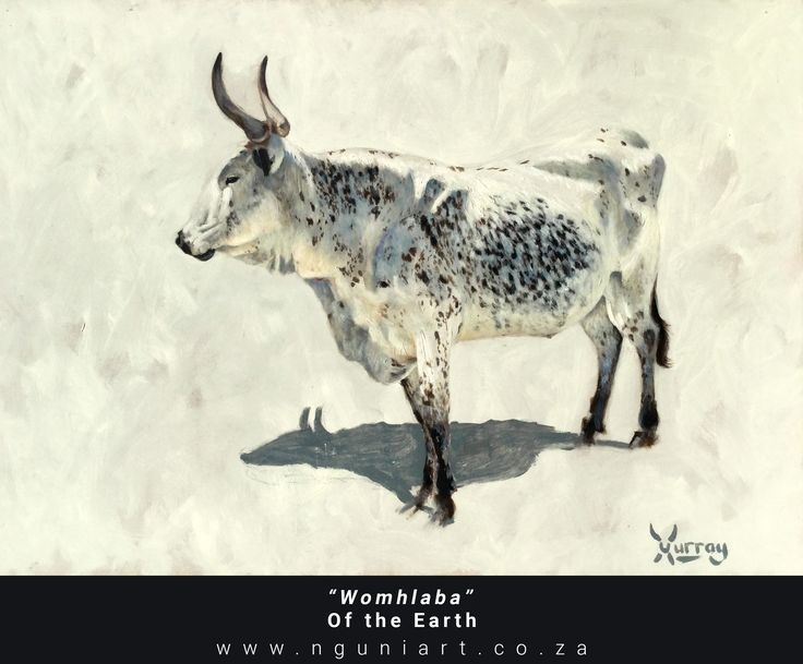 """Murhangeli""  Leader (Tsonga translation) Nguni Bull Oil Painting ***New July 2017*** Medium: Oil on panel Size: A2 42cm x 59.4cm"