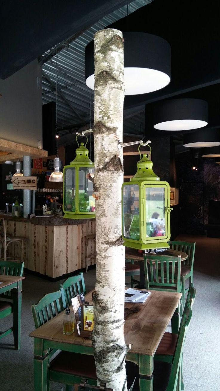 berkenstam met lantaarns. Leuk voor binnen maar ook voor buiten bij terras www.decoratietakken.nl