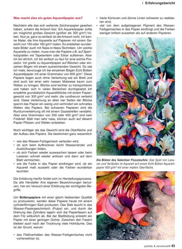 Aquarellmalerei Das Papier Macht Den Unterschied