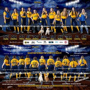 Bulldogs Banner Fastpitch Softball_Sports Banner_Softball Banner_Baseball Banner_Team Pictures_Softball Posters_Sports Posters_Softball Team Pictures_Macomb County Photographer_Sterling Heights Photographer_Two sided banner