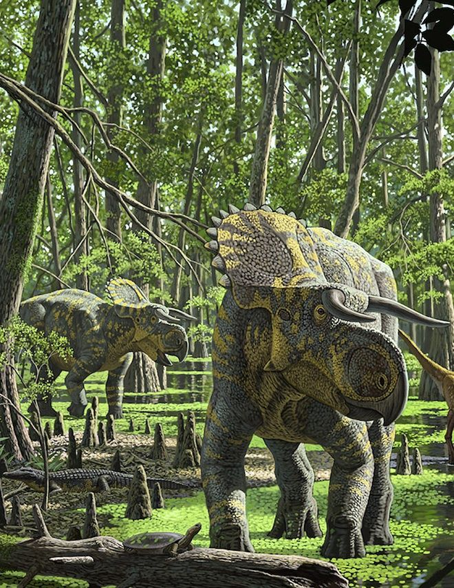Nasutoceratops titusi in the Late Cretaceous forests of the Kaiparowits Formation. (Raúl Martín)