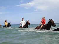 Heritage Beach Horse Ride from Ocho Rios or Runaway Bay, Jamaica
