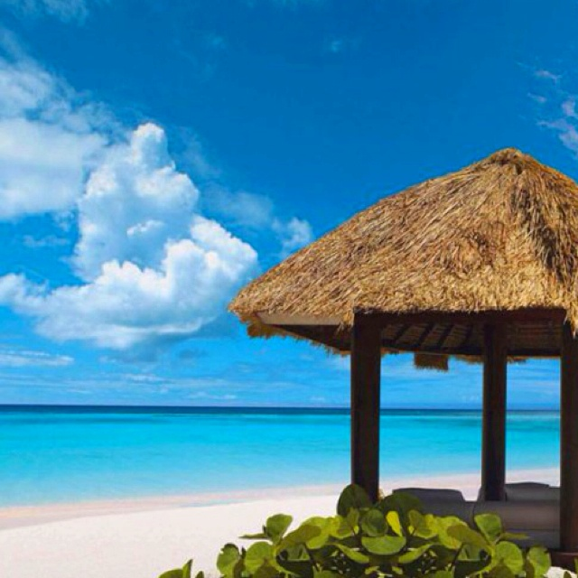 Punta-Cana. Quer ir viajar comigo??