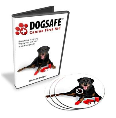 Dogsafe Canine First Aid DVD (FREE SHIPPING to Canada/USA)