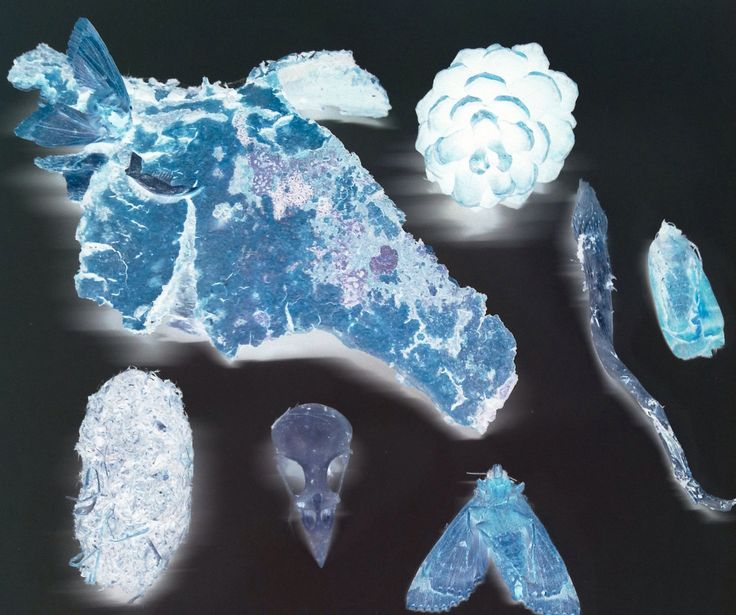 Fragments from the Glacier 7