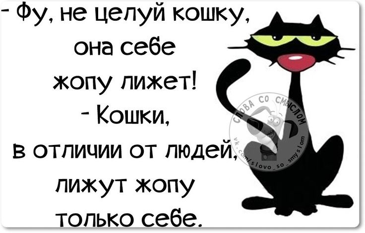 7bd_IXnA0TE.jpg (896×574)