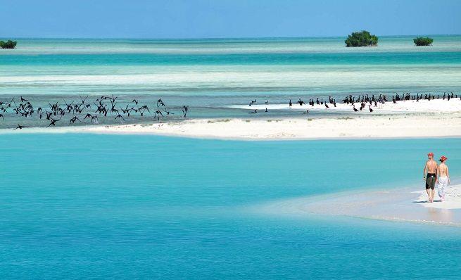 Cayo Largo del Sur, Cuba.  #Cuba #beach