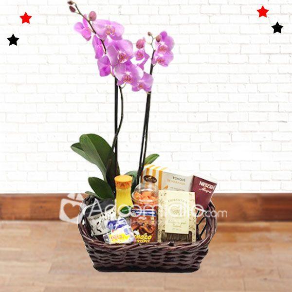 Desayunos sorpresa a domicilio en bogota Desayunos sorpresa a domicilio con planta de orquidea Pedido con 1 dia anticipado