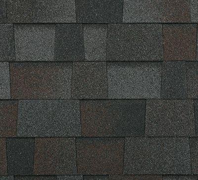 Malarkey Legacy - black oak - asphalt shingle - A1 Roofing Systems