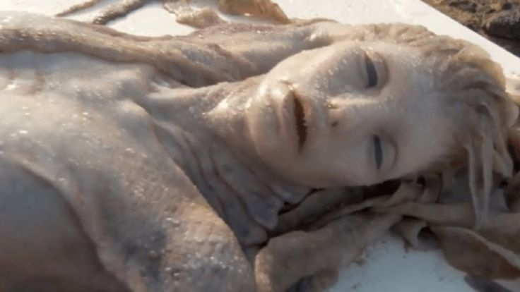 17 Real Life MERMAID Hoaxes *THE EVIDENCE*                                                                                                                                                     More
