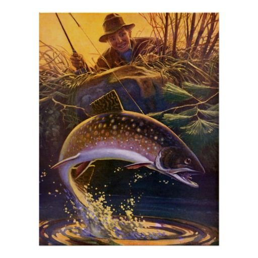 50 best catch release images on pinterest butterflies for Best trout fishing near me