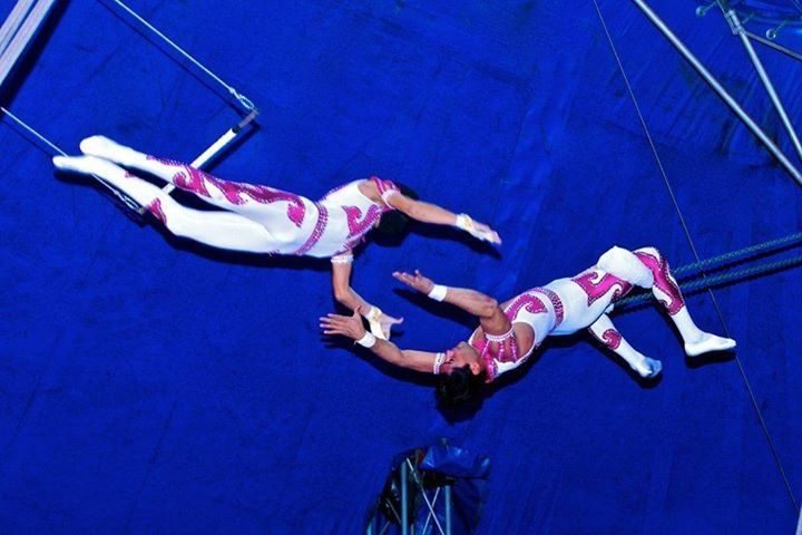 Circus Gerbola visits Westport (at the Quay) from Tuesday 2nd to Thursday 4th of…