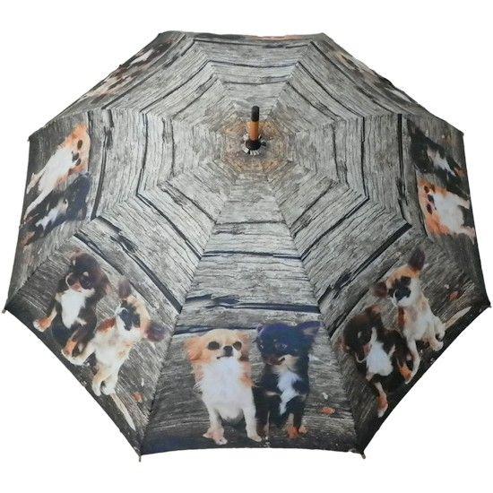 paraplu hout chihuahua familie - Paraplu's met honden afbeelding - Honden accessoires - Dieren