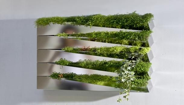 Silver Mirror Metallic Salad Wall Indoor Kitchen Herb