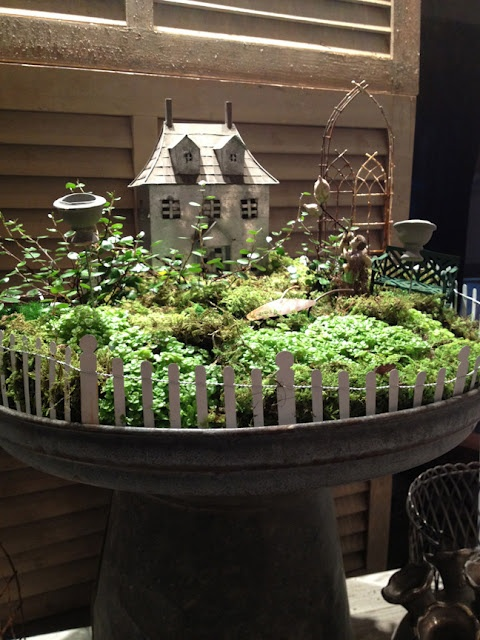 How adorable is this mini garden?