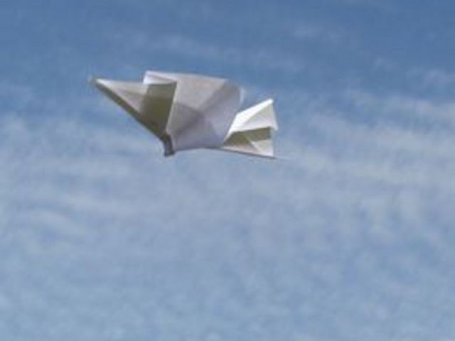 How to Make a Paper Airplane (with Pictures) | eHow