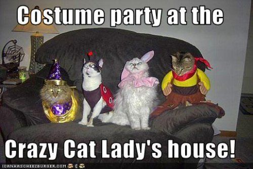 Costume Party at the Crazy Cat Lady's house!11 Best Pics of the Crazy Cat Lady Meme