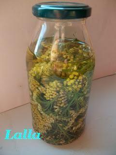 Elicriso L'Elicriso ( Helichrysum italicum G. Don ) è una pianticella che cresce spontaneamente in terreni calcarei, aridi ed in zone...