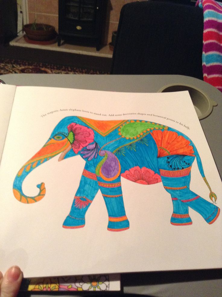 Elephant from Millie Marotta's Animal Kingdom colouring book (for adults). #colouring #colour