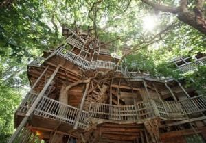 Worlds largest tree house