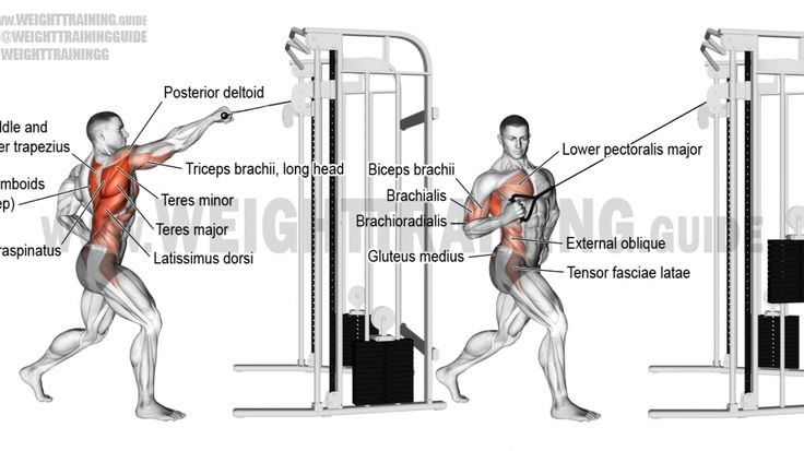 best 25  cable machine workout ideas on pinterest