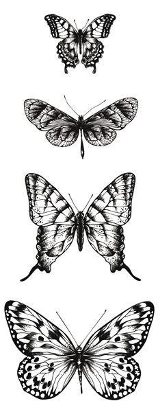 . Butterflies printables